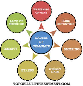 Causes of Cellulite